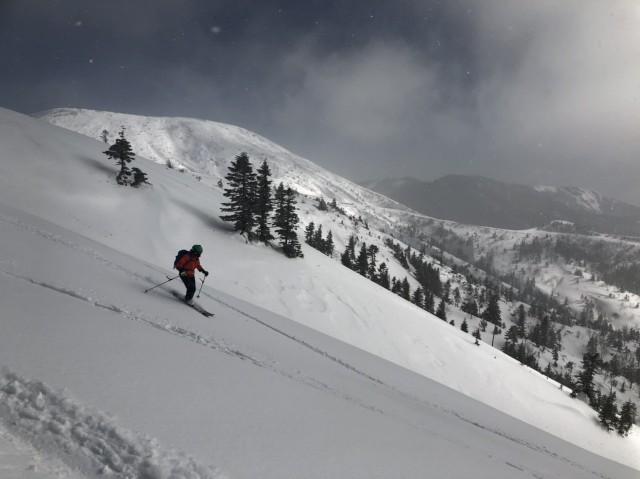 白根方面と調和したスキーラインどり