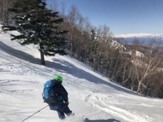 雪質の良い北斜面を滑降