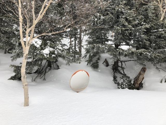 トラディショナルトレイルの雪に埋もれたミラー