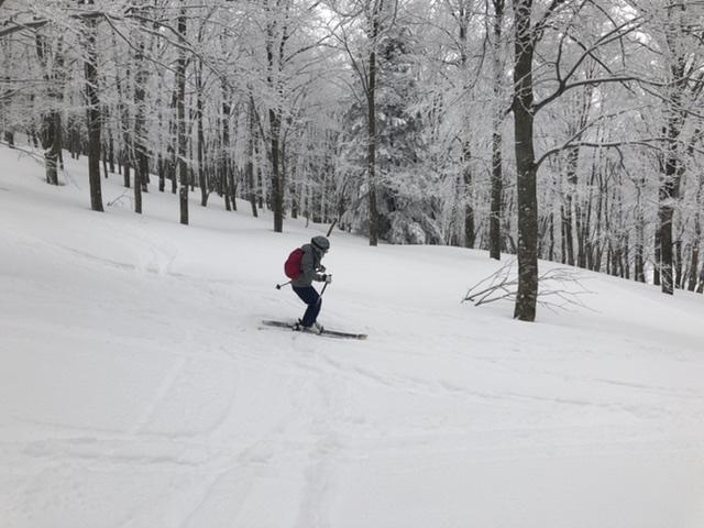 流れように新雪を滑る。
