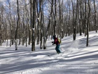楽しそう、自然との対話がスキーの醍醐味。