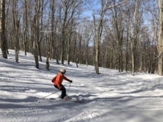 スキーのたわみ、かえりを感じるタ—ニング。